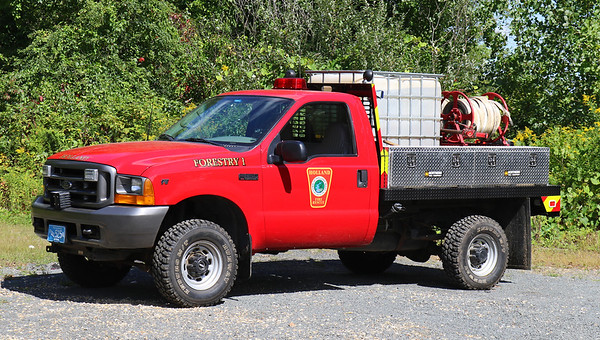 Forestry 1   1999 Ford F-350 / Custom   200 / 300