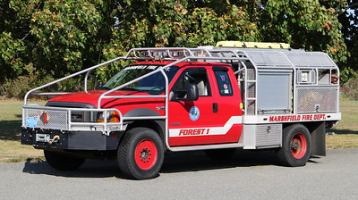 Forest 1   2005 Ford F-550 / Firematic Brat   300 / 400 / 15F