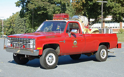 Forestry 1  1980 Chevrolet  100/300