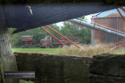 Peaking out between the boards of an old barn near Estherville, Iowa, September 2013.