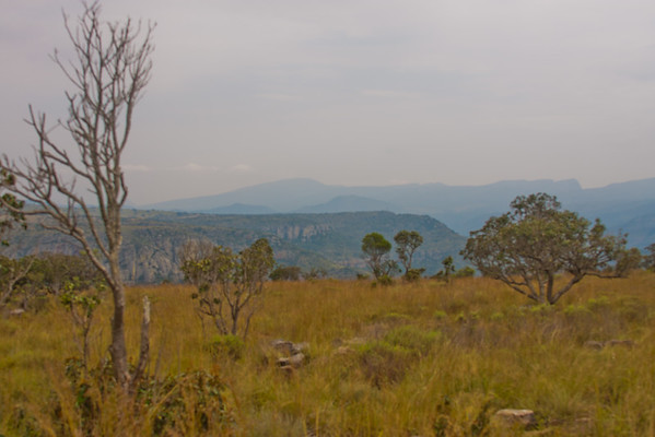 Blyde River Canyon Nature Reserve in South Africa 10: Journey into Africa