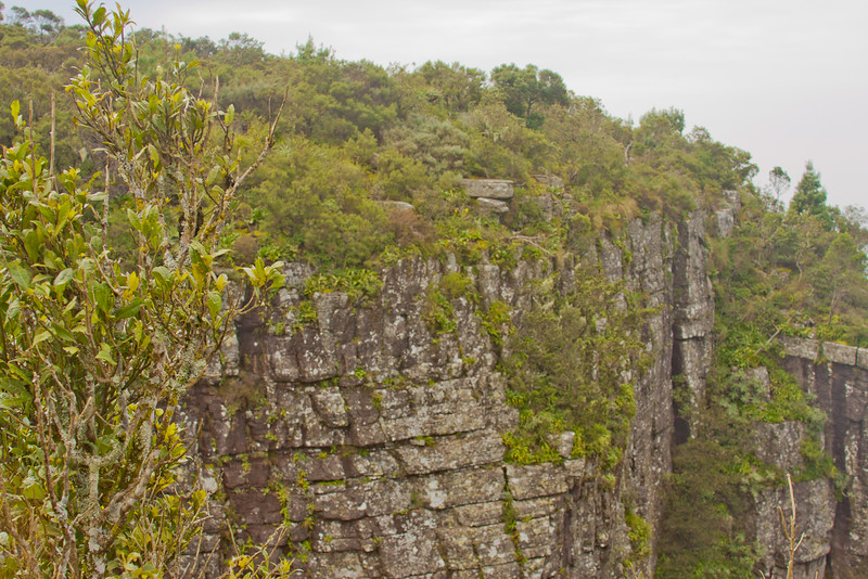 Blyde River Canyon Nature Reserve in South Africa 2: Journey into Africa
