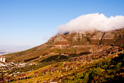 Table Mountain Cape Town South Africa 1: Journey into Africa