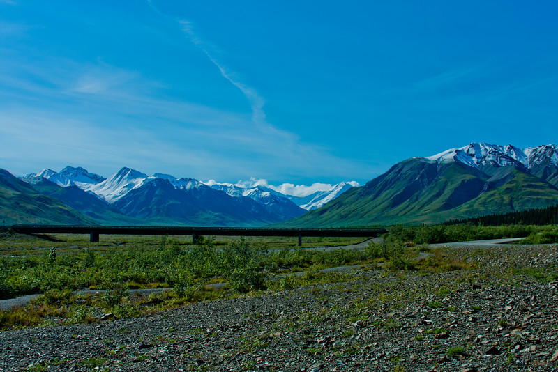 Hike through Denali National Park 25: Journey into Alaska