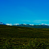 Hike through Denali National Park 10: Journey into Alaska