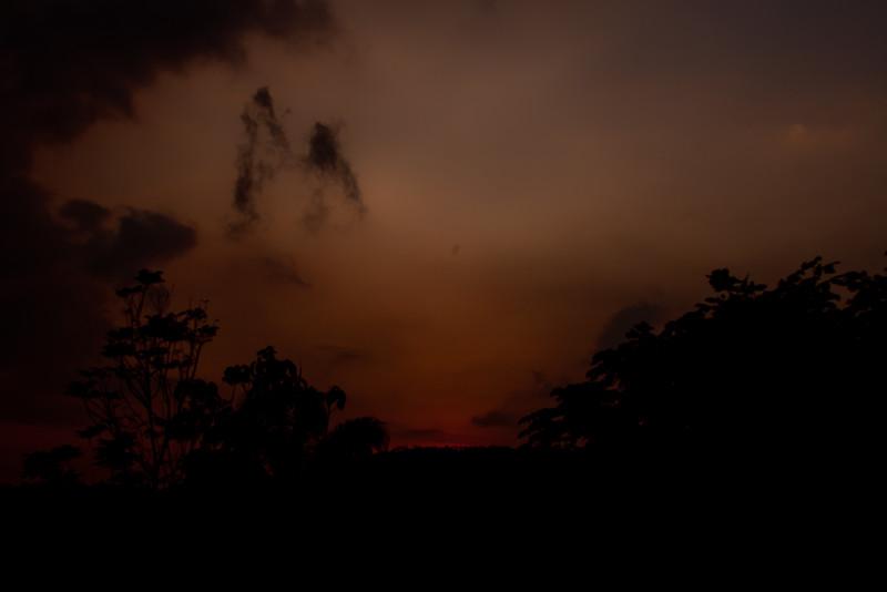 Nature in Chiapas 7:Journey into Chiapas Mexico