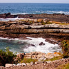 Tide Pools in South Africa