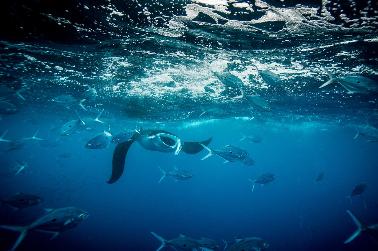 île de Ua Pou - Archipel des Marquises