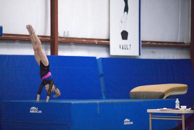 Calaveras Gold Gymnastics