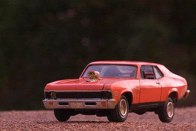 1/32 scale 1969 Nova