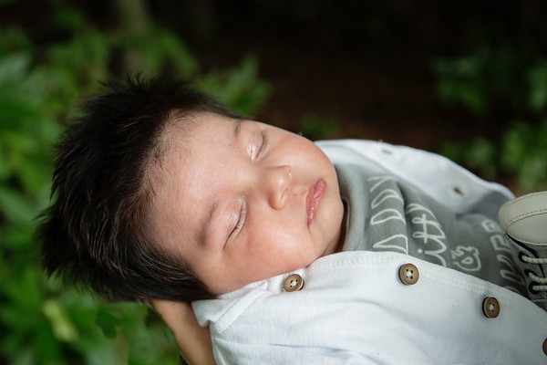 Benson ~ Newborn