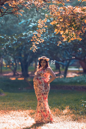 Creative maternity portrait photoshoots for you