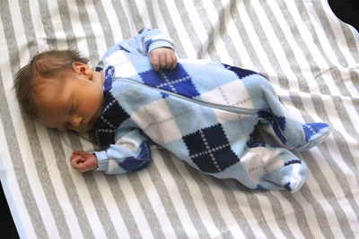 Brody- Newborn