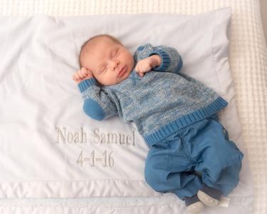 Noah Regev -4493