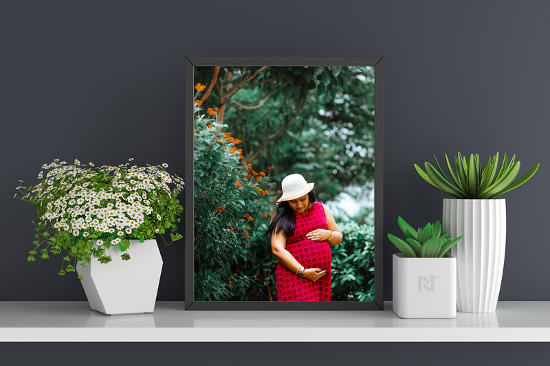 Flower and succulent pot plant with frame mockup, 3D rendering