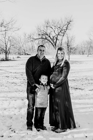 00004--©ADHphotography2018--Fornoff--Maternity--December8