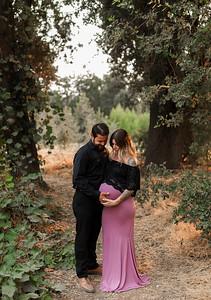 Alexandria Vail Photography Fowler Maternity Session Kaweah Oaks Preserve  014