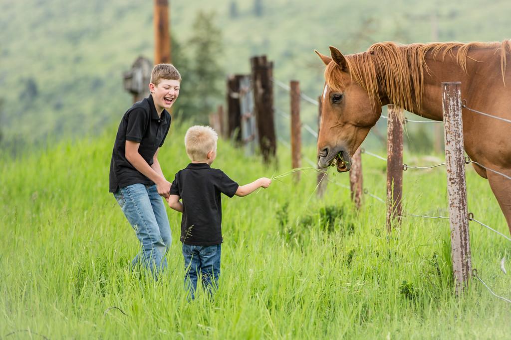 horsing arround