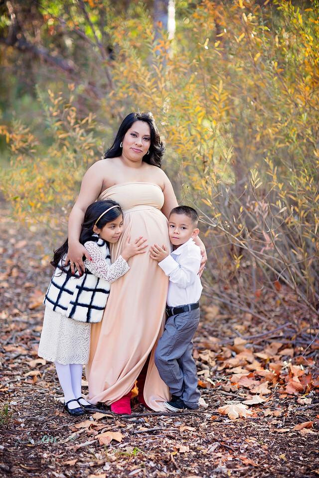 Post Family Maternity 015