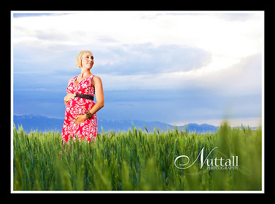 Melissa Maternity 70