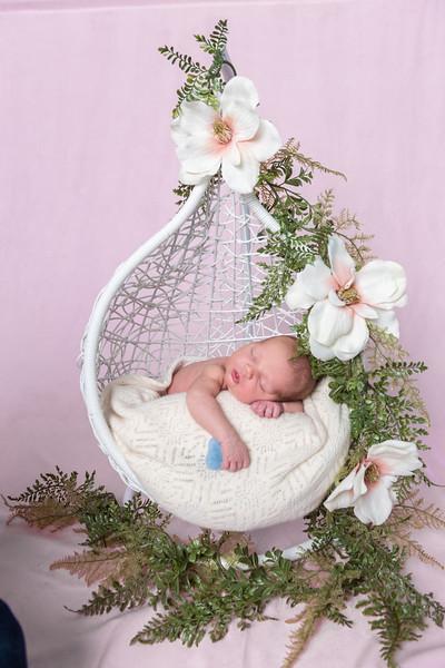 Photographer_DC_Metro_newborn_schiavetto-750_1862