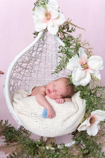 Photographer_DC_Metro_newborn_schiavetto-750_1855