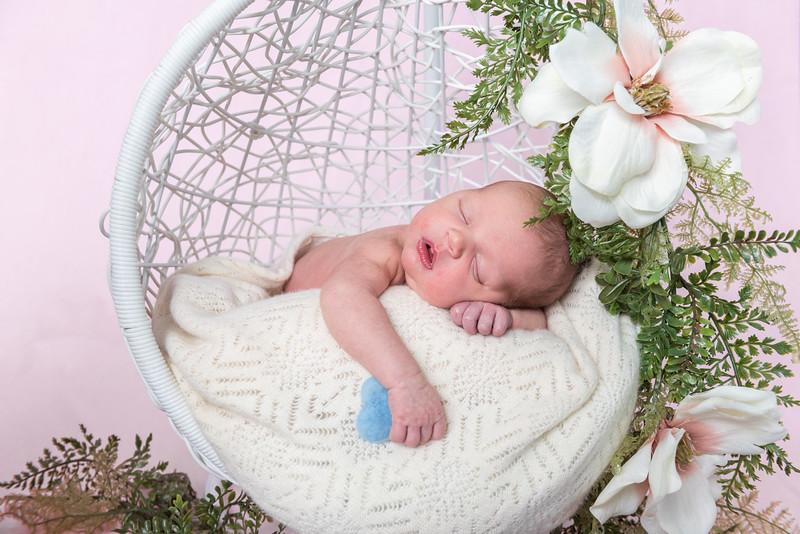 Photographer_DC_Metro_newborn_schiavetto-750_1865