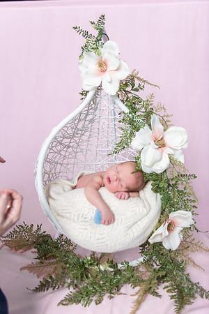 Photographer_DC_Metro_newborn_schiavetto-750_1860