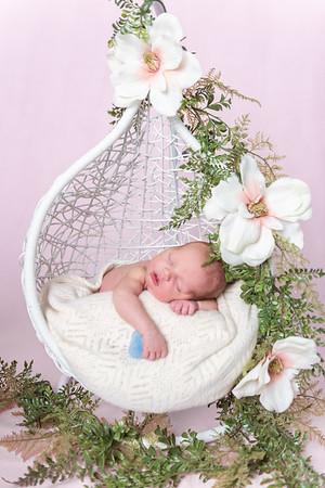 Photographer_DC_Metro_newborn_schiavetto-750_1858