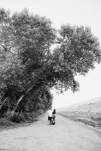 Wheeles Maternity 6 2020-4