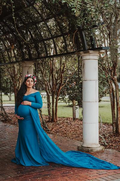 Maternity session Land O'Lakes