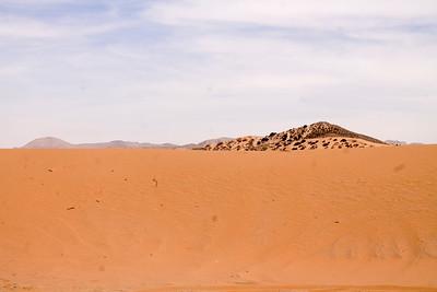 Jessiree - Red Sands Madonna