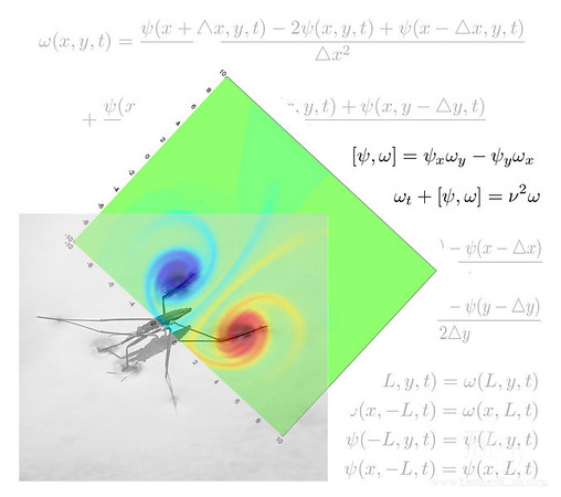 """Vorticity Streamfunction solution for two opposite charge Gaussians (How a waterskipper moves). I did a matlab project to solve the partial differential equation and make a video of the vortex flow shown above.   Movie link: <a href=""""http://www.heatherdillon.com/Science/Math/2008-12-AMATH581/6795384_xetLy#434825075_PyDYQ"""">http://www.heatherdillon.com/Science/Math/2008-12-AMATH581/6795384_xetLy#434825075_PyDYQ</a>"""