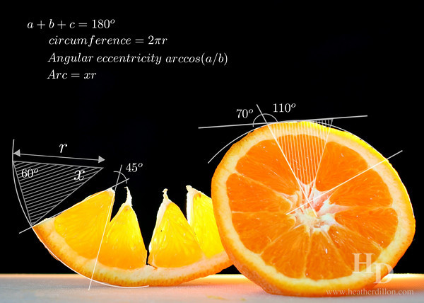Angles of an Orange.<br /> This image is a finalist in the Science & Math-based Art contest