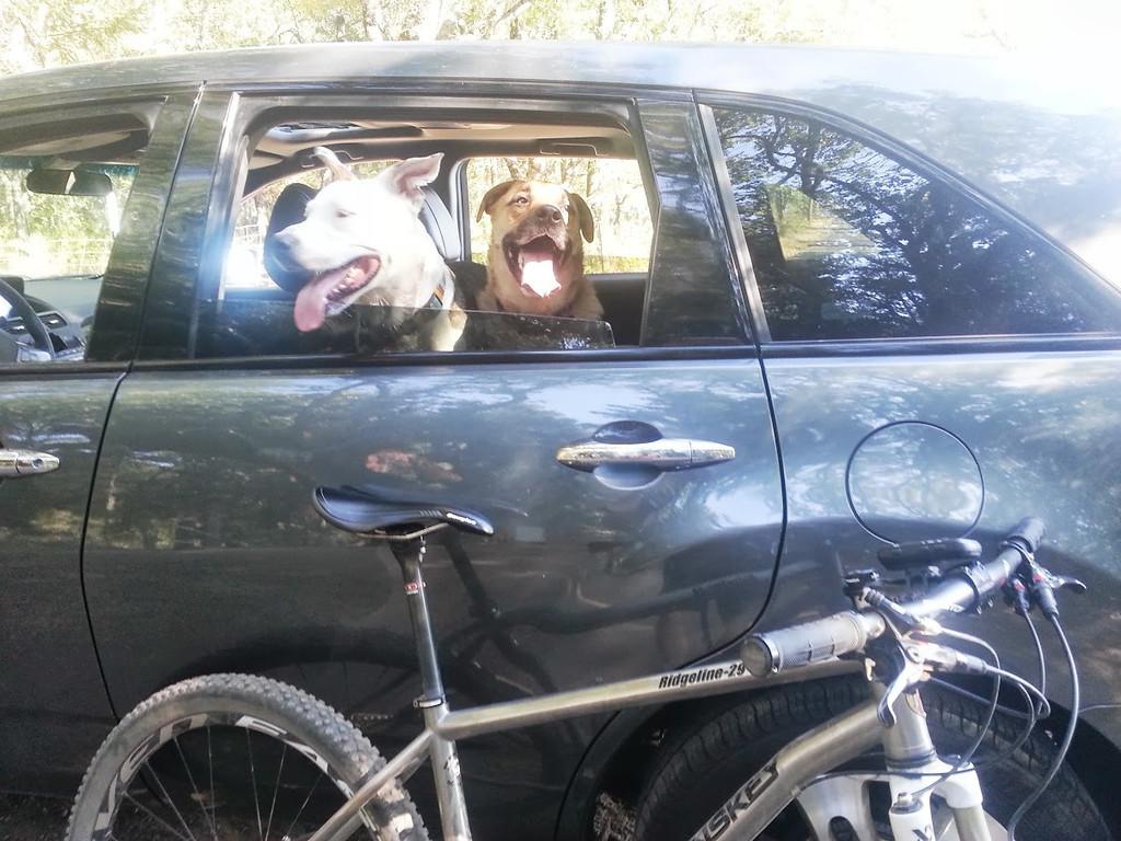 Post Ride