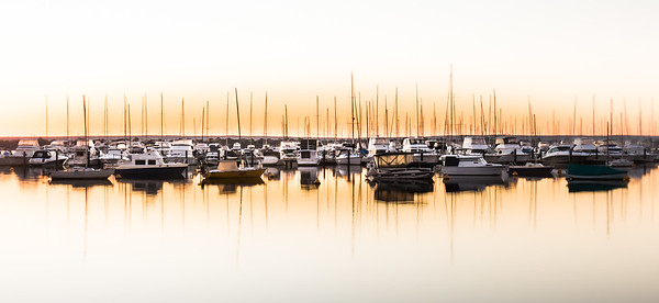 Masts at Dawn