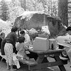 17 - Camping trip BayView