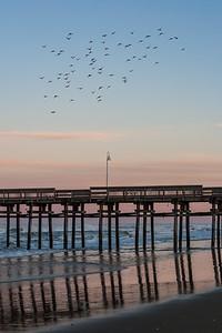 Sandbridge Serenity