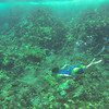 Underwater snorkeling video of Ruth