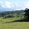 Countryside view during Haleakala bike ride