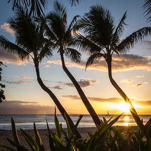 Maui April 2016
