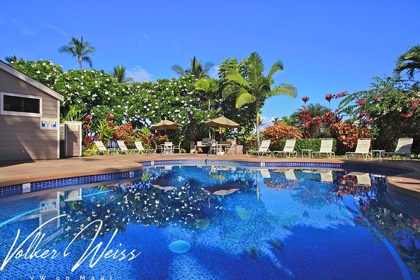 Grand Champions Villas - Pools & Recreation Areas