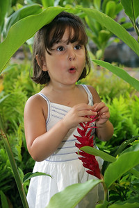 Maui Family Photography   $199 Package with Online Gallery