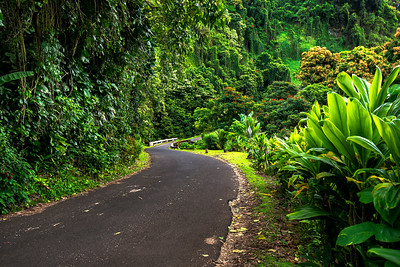 Beautiful Road To Hana, Maui, Hawaii