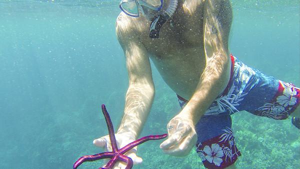 Gemini Snorkel with Will