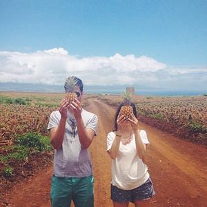Haliimaile Pineapple Tour - Maui Pineapple Tours