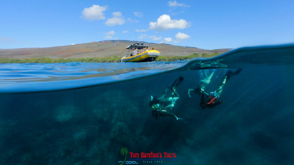 Molokini Exclusive Snorkel