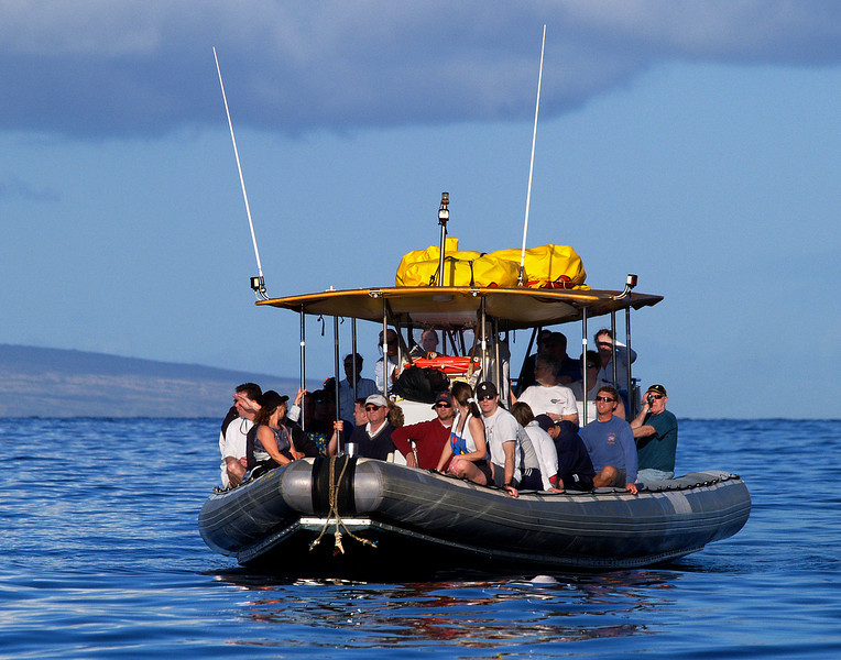"<p></p> <div id=""centered_description"">Whale Watchers, Au'au Channel</div>"