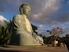 "<p></p><div id=""centered_description"">Jodo Mission Buddha, Lahaina </div>"