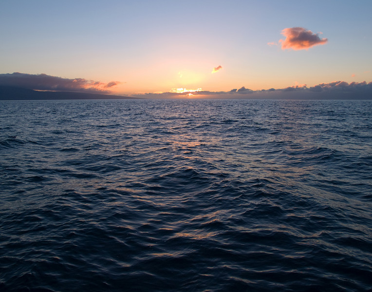 "<p></p> <div id=""centered_description"">Open Ocean, Au'au Channel</div>"